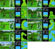 wii golf nes same course