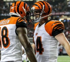 Cincinnati-Bengals-Team-Preview-2013-640x355