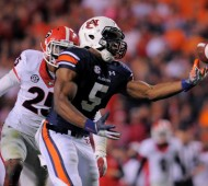 Nov 16, 2013; Auburn, AL, USA; Auburn Tigers wide receiver Ricardo Louis (5) scores the game-winning touchdown against the Georgia Bulldogs at Jordan Hare Stadium. The Tigers defeated the Bulldogs 43-38. Mandatory Credit: Shanna Lockwood-USA TODAY Sports