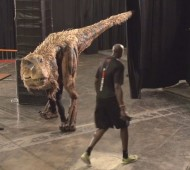 Suns Players Pranked By Fake Velociraptor
