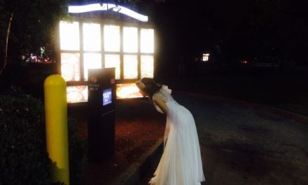 Drunk Bride Orders Taco Bell After Wedding Reception