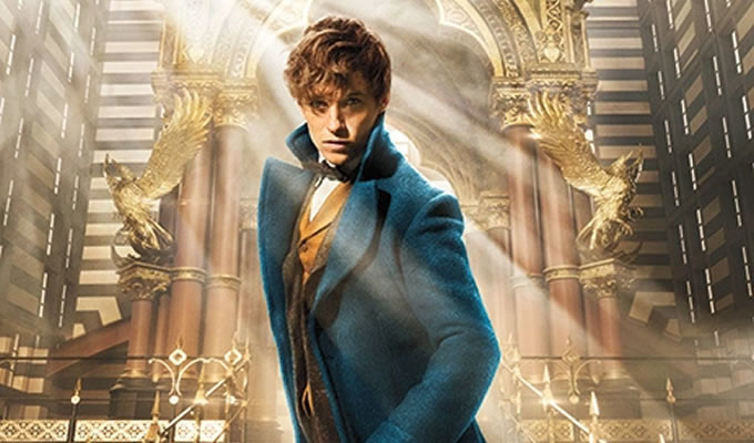 You Had Me at Lumos: Watch 'Fantastic Beasts and Where to Find Them' Announcement Trailer